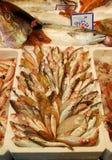 Mercado de peixes italiano imagens de stock