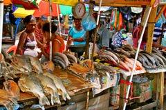 Mercado de peixes - vida real de Cartagena. Fotos de Stock Royalty Free
