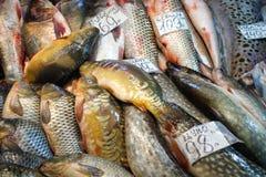 Mercado de pescados Foto de archivo libre de regalías