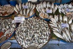 Mercado de pescados de Estambul - Turquía Imagen de archivo libre de regalías