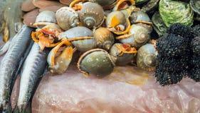 Mercado de pescados de los mariscos Foto de archivo