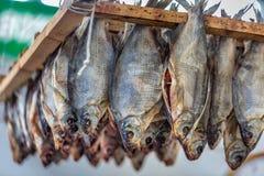 Mercado de pescados de Riga imagen de archivo libre de regalías