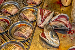 Mercado de pescados en China Foto de archivo libre de regalías