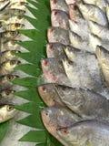Mercado de pescados en Hong-Kong imagen de archivo