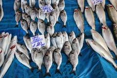 Mercado de pescados en Hong-Kong Fotos de archivo libres de regalías