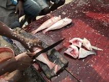 Mercado de pescados en Hong-Kong Imágenes de archivo libres de regalías