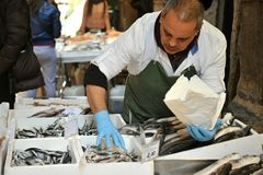 Mercado de pescados en la ciudad de Bolonia, Italia Imagen de archivo