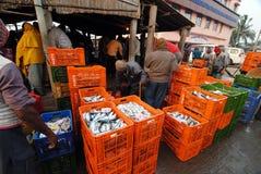 Mercado de pescados en la India Fotografía de archivo libre de regalías