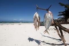 Mercado de pescados en la playa Imagen de archivo libre de regalías