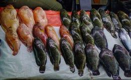 Mercado de pescados en Manila, Filipinas Foto de archivo libre de regalías