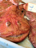 Mercado de pescados extraño Imagen de archivo libre de regalías