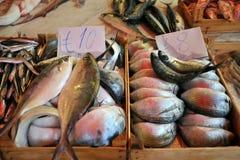 Mercado de pescados frescos en Palermo, Sicilia, Italia Imagen de archivo libre de regalías