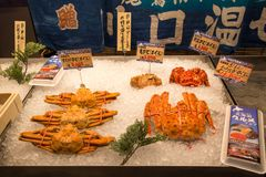 Mercado de pescados de Kuroshio, Wakayama, Kansai, Japón foto de archivo