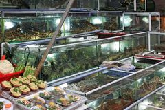 Mercado de pescados de la noche en la isla de Phu Quoc foto de archivo