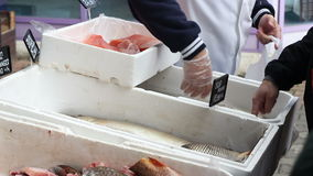 Mercado de pescados tradicional almacen de metraje de vídeo