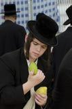 Mercado de quatro espécies para o feriado judaico de Sukkot Imagem de Stock Royalty Free