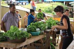 Mercado del alimento biológico Imágenes de archivo libres de regalías