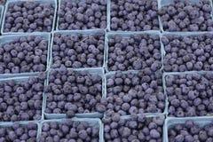 Mercado del granjero Imagen de archivo
