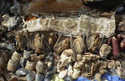 Mercado del Shaman, Bamako, Malí Imágenes de archivo libres de regalías