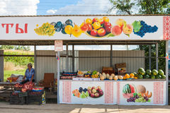 Mercado do jardim do fazendeiro do campo, Rússia foto de stock