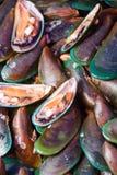 Mercado do marisco Fotos de Stock