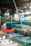 Mercado do marisco de Guangzhou Imagem de Stock Royalty Free