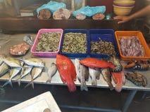 Mercado do marisco para a venda, o camarão e outros peixes frescos imagens de stock royalty free