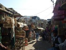 Mercado do pássaro de Faroshi do Ka, Kabul Foto de Stock Royalty Free