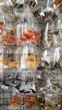 Mercado do peixe dourado Fotografia de Stock
