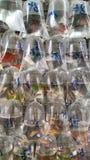 Mercado do peixe dourado Imagens de Stock Royalty Free