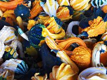 Mercado dos fazendeiros Foto de Stock