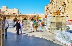 Mercado dos pássaros da visita de Souq Waqif, Doha, Catar Foto de Stock Royalty Free