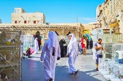 Mercado dos pássaros de Doha, Catar Fotos de Stock
