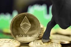 Mercado em alta de Ethereum fotos de stock