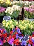 Mercado europeu para tulipas e anêmonas fotografia de stock