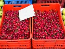 Mercado grego dos fazendeiros, cerejas vermelhas maduras Foto de Stock Royalty Free