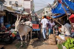 Mercado local de la comida en Tiruvannamalai Imagen de archivo libre de regalías