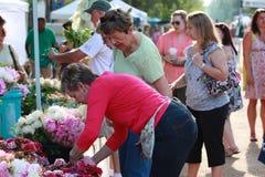 Mercado local dos fazendeiros Fotos de Stock Royalty Free