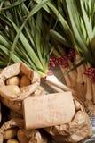Mercado orgânico Fotografia de Stock