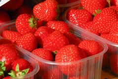 Mercado Strawberies Imagenes de archivo