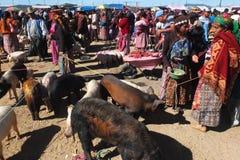 Mercado tradicional de los animales. imagen de archivo