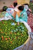 Mercado vegetal, Bolívia Fotografia de Stock Royalty Free