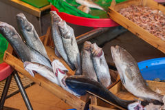 Mercado y mariscos de pescados: Estambul, Bosphorus Foto de archivo libre de regalías