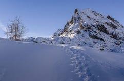 Mercantour Nationnal公园Montain  免版税图库摄影