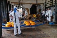 Mercato Alkmaar del formaggio Immagine Stock Libera da Diritti