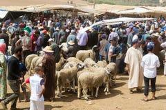 Mercato all'aperto delle pecore nel Marocco Immagini Stock Libere da Diritti
