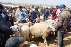 Mercato all'aperto delle pecore nel Marocco Fotografia Stock Libera da Diritti