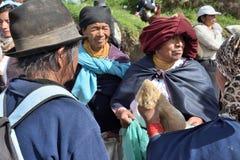 Mercato animale in Otavalo, Ecuador fotografia stock libera da diritti