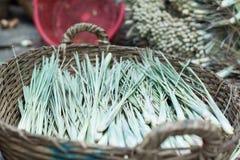 Mercato asiatico delle verdure del canestro dell'erba della cipolla verde Fotografia Stock Libera da Diritti
