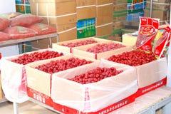 Mercato cinese tipico dell'alimento, Canton, Cina Immagini Stock